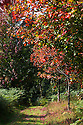 14/09/14 <br />