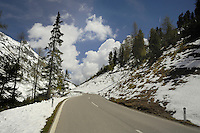 Tree lined empty road with trees and snowy embankment. Hahntennjoch pass, Imst district, Tyrol. Tirol, Austria