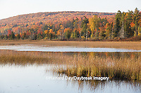 64776-01420 Pond and fall color Alger County Upper Peninsula Michigan
