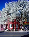 Pennsylvania Avenue, Baltimore, MD