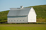 White wooden barn with corrugated roof and ventilator, Washington's Palouse