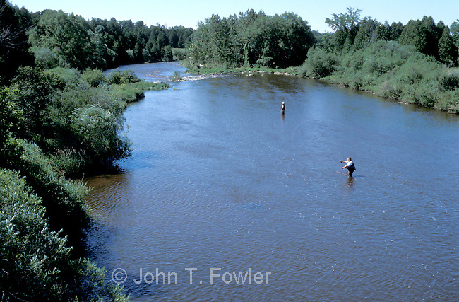 Fly fishing for trout on Grand River, Ontario