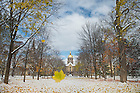 Nov. 13, 2014; Leaves fall from the trees on the Main Quad after the first snowfall.