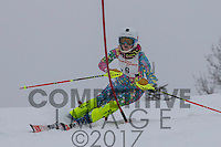 2017 Section 6 Alpine Ski Meet - PM Run