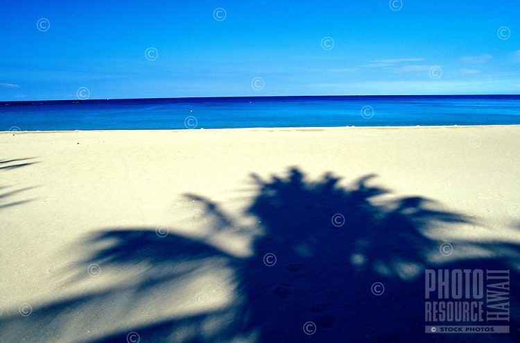 Palm trees shadows on Hapuna Beach