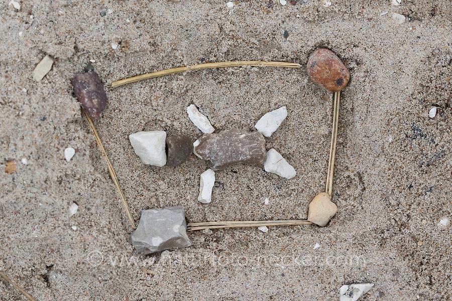 Naturkunst am Strand, Kind hat aus Steinen, Steinchen und Stöckchen ein Tier im Gehege gelegt, Strandkunst, Meer, Küste,