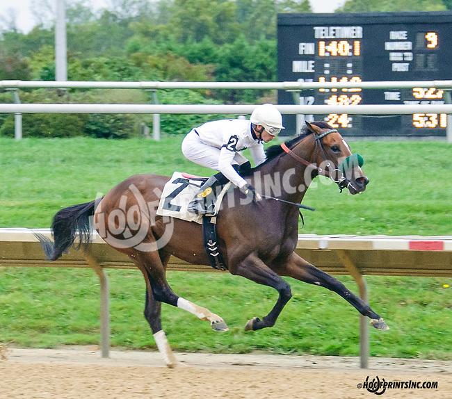 Summer Soldier winning at Delaware Park on 9/30/15