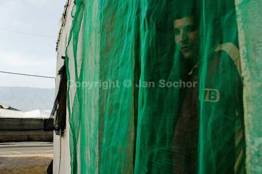 A Moroccan immigrant worker looks from behind the mosquito net in his house in El Ejido, Spain, 22 May 2007. El Ejido, a dry region on the coast of Andalusia, has changed during the last decades into the centre of vegetable production not only for the Spanish market. A half of Europe is supplied by tomatoes, peppers and melons from El Ejido. This economic miracle is from a major part based on a cheap labor force of illegal immigrants from Maghreb and Subsaharian Africa. Tens of thousands of workers keep the plastic sea of greenhouses running for the minimum wage of 30 Euros a day.