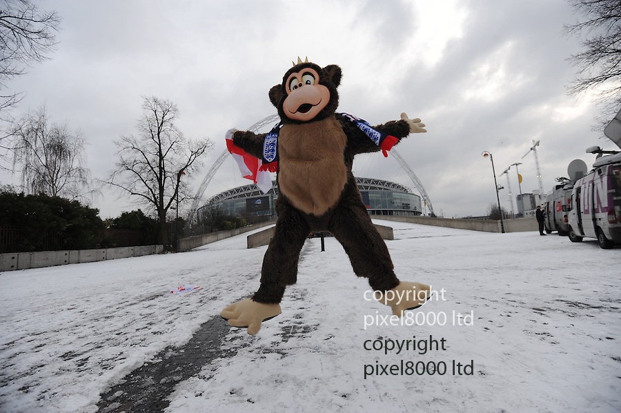 England fail in World Cup bid for 2018.England fan Simon Wigginton, 33, from Leicester travelled to Wembley to celebrate. But he was disappointed..He was dressed in a monkey suit - but England bid ended up looking like the monkeys......pic by Gavin Rodgers/ Pixel 8000.07917221968
