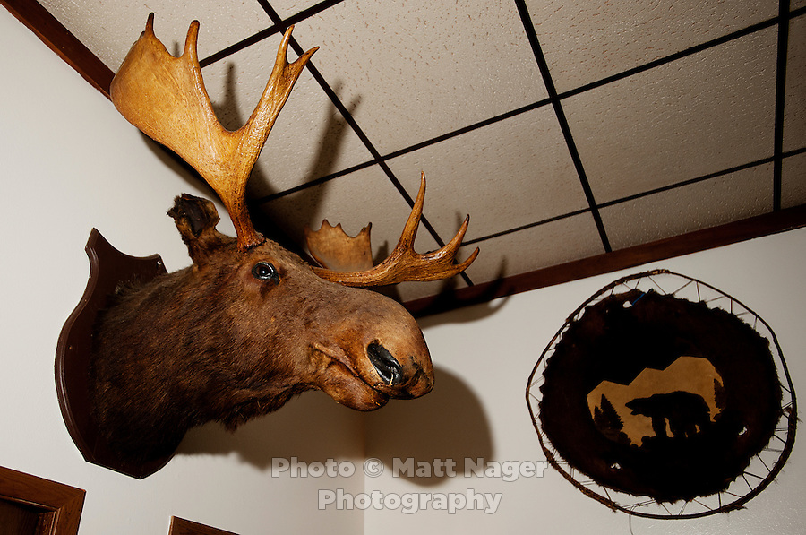 A stuffed moose head at the Little Bear Inn restaurant, located just outside Cheyenne, Wyoming, Thursday, June 2, 2011. The restaurant is decorated in a 1960s style with many stuffed animals lining the walls...Photo by Matt Nager