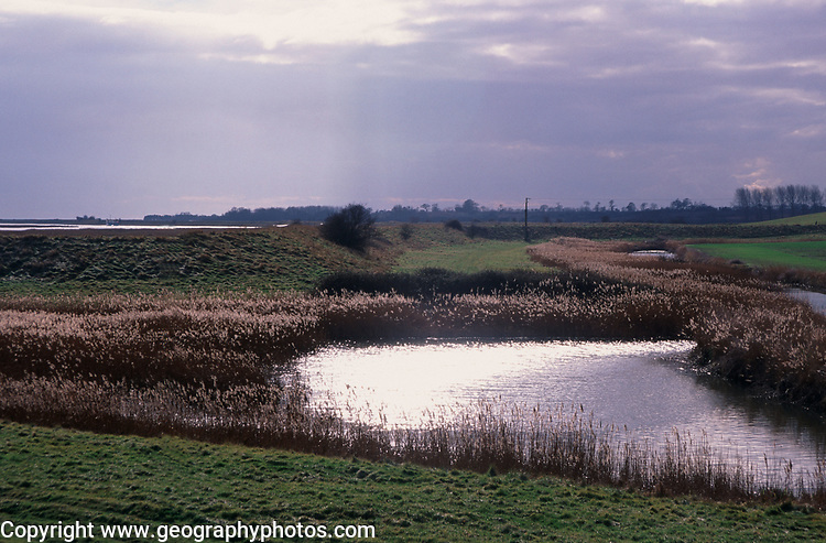 A912G4 Drainage ditches below  river wall and level of Butley Creek river near Burrow Hill, Suffolk, England