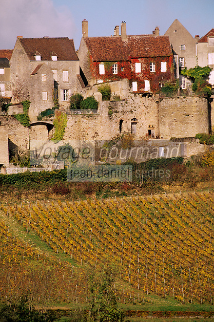 Europe/France/89/Yonne/Vézelay : Maisons du village et le vignoble