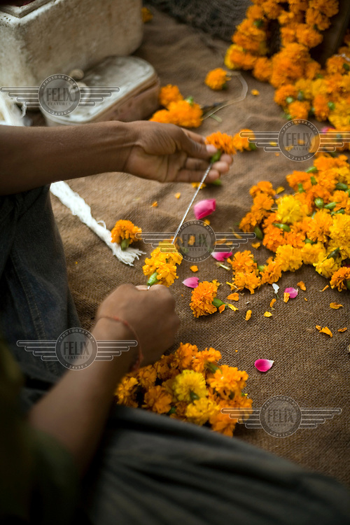 A man makes garlands from flowers to offer at the shrine of a Hindu temple in Janakpuri, New Delhi.