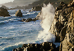 Sea stacks, Point Lobos State Reserve, California
