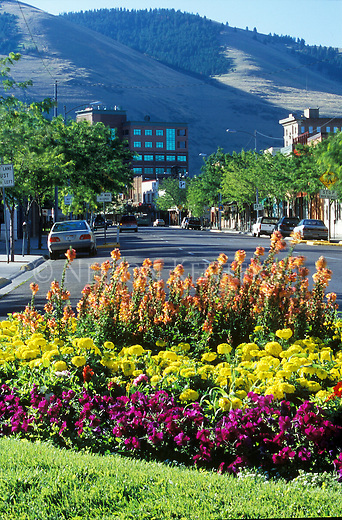 A flower garden on Front street in Missoula, Montana