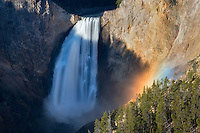 Lower Falls of the Yellowstone River. with rainbow. Yellowstone National Park, Wyoming