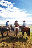 USA, Wyoming, Encampment, cowboys take a break on their horses during a branding, Big Creek Ranch