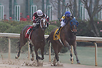March 14, 2015: #4 Gold Medal Dancer with jockey Luis Quinonez aboard battling #1 Untapable for the win in the Azeri Stakes at Oaklawn Park in Hot Springs, AR. Justin Manning/ESW/CSM
