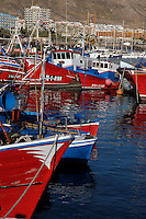 Fishing boats docked, Los Cristianos harbour, Tenerife, Canary  Islands.
