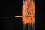 A fence post painted orange designating no trespassing in Montana