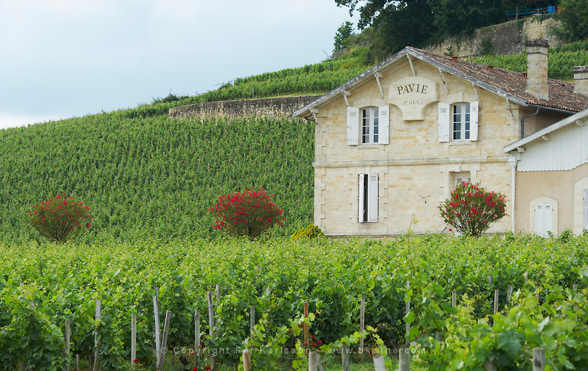 chateau pavie saint emilion bordeaux france