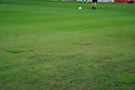 11.03.2019, Merkur Spielarena, Duesseldorf , GER, 1. FBL,  Fortuna Duesseldorf vs. Eintracht Frankfurt,<br />  <br /> DFL regulations prohibit any use of photographs as image sequences and/or quasi-video<br /> <br /> im Bild / picture shows: <br /> der Duesseldorfer Rasen in desolatem Zustand ueberall Flickstellen <br /> <br /> Foto &copy; nordphoto / Meuter