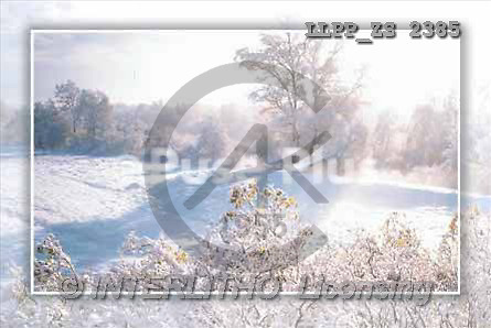 Maira, CHRISTMAS LANDSCAPE, photos(LLPPZS2385,#XL#) Landschaften, Weihnachten, paisajes, Navidad