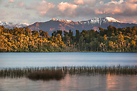 Native forest with mountains at Lake Mahinapua in sunset, South Westland, West Coast, New Zealand, NZ