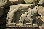 Golan Heights, a stone carving in Umm el Kanatir ancient Synagogue depicting an Eagle and a Lion