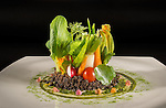 Fivelements Cuisine 2015