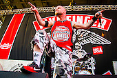 FIVE FINGER DEATH PUNCH (2014)