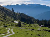 Hochimst Obermarkter Alm, Imst, Tirol, &Ouml;sterreich, Europa<br /> Obermarkter Alm,, Hochimst, Imst, Tyrol, Austria, Europe