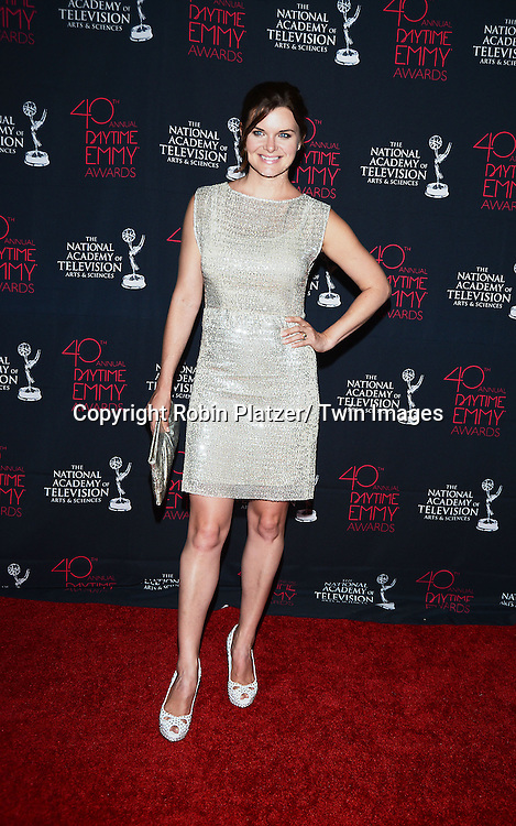Heather Tom in Alice & Olivia silver dress  attends the 40th Annual Daytime Creative Arts Emmy Awards on June 14, 2013 at the Westin Bonaventure Hotel in Los Angeles, California.