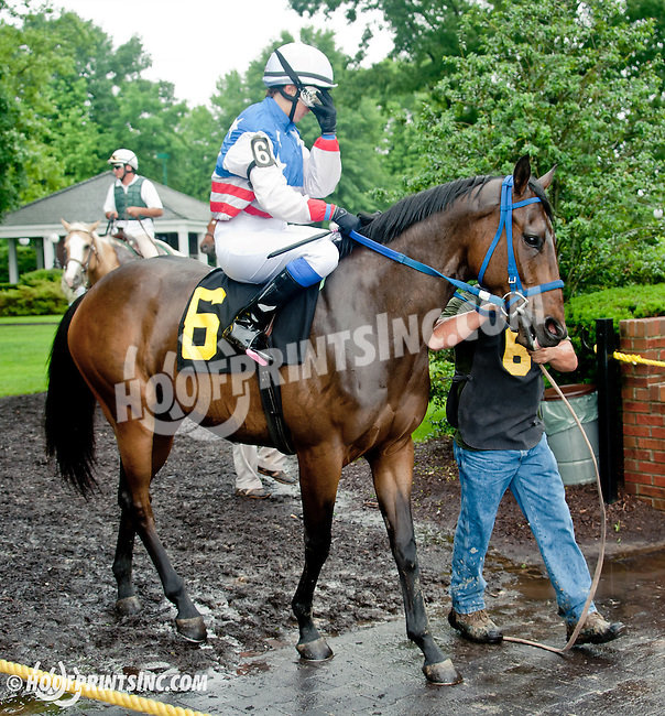 Fugi Pegasus with  Zoe Valvo aboard before The International Ladies Fegentri Race at Delaware Park on 6/10/13