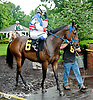 Fugi Pegasus with  Zoe Valvo aboard before The International Ladies Fegentri Race at Delaware Park on 6/10/13