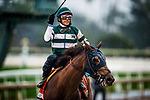 ARCADIA, CA - MARCH 10: Accelerate #7, ridden by Victor Espinoza wins the Santa Anita Handicap at Santa Anita Park on March 10, 2018 in Arcadia, California. (Photo by Alex Evers/Eclipse Sportswire/Getty Images)