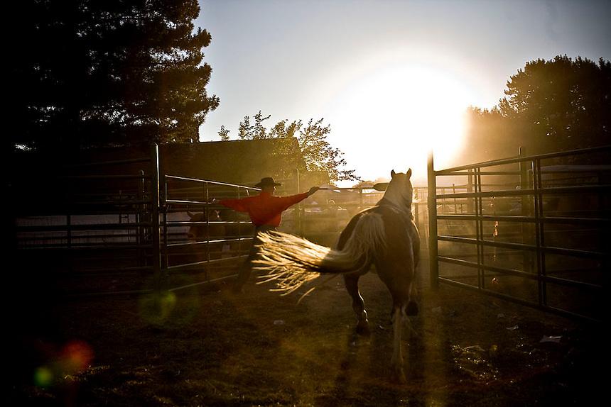 Pioneer Days Rodeo - Ogden, UT