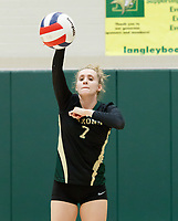 Langley Volleyball Additional