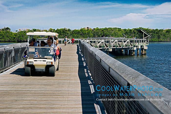 1,600-foot boardwalk, spanning across Lake Worth, a preserved pristine estuary, John D. MacArthur Beach State Park, North Palm Beach, Florida