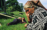 Leslie and Edna, Romanies, resting at the roadside, after a hard days journey by horse and wagon. Leicestershire, England 1999