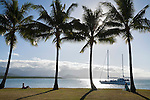 Tourist boat heading back to port viewed from Rex Smeal Park.  Port Douglas, Queensland, Australia