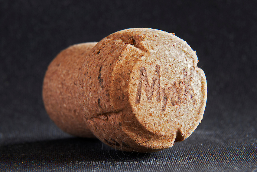 mytik technical champagne cork