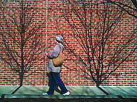 Woman walking on sidewalk with tree shadows cast on red brick wall. iPhone photo. Manipulated with app.