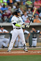 Shortstop Michael Paez (3) of the Columbia Fireflies bats in a game against the Lexington Legends on Saturday, April 22, 2017, at Spirit Communications Park in Columbia, South Carolina. Lexington won, 4-0. (Tom Priddy/Four Seam Images)
