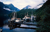 Fishing boats moored in Wanganella Cove, Doubtful Sound, Fiordland National Park, South Island , New Zealand.