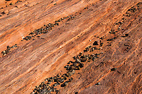 Valley of Fire, Nevada.  The Fire Wave--Striations of Red Sandstone.
