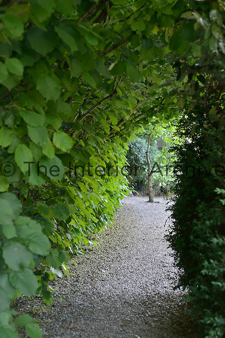 A view through an archway created by over hanging foliage in a gravel garden.