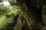 Balade sur le canal de Beauregard (ou canal des esclaves)