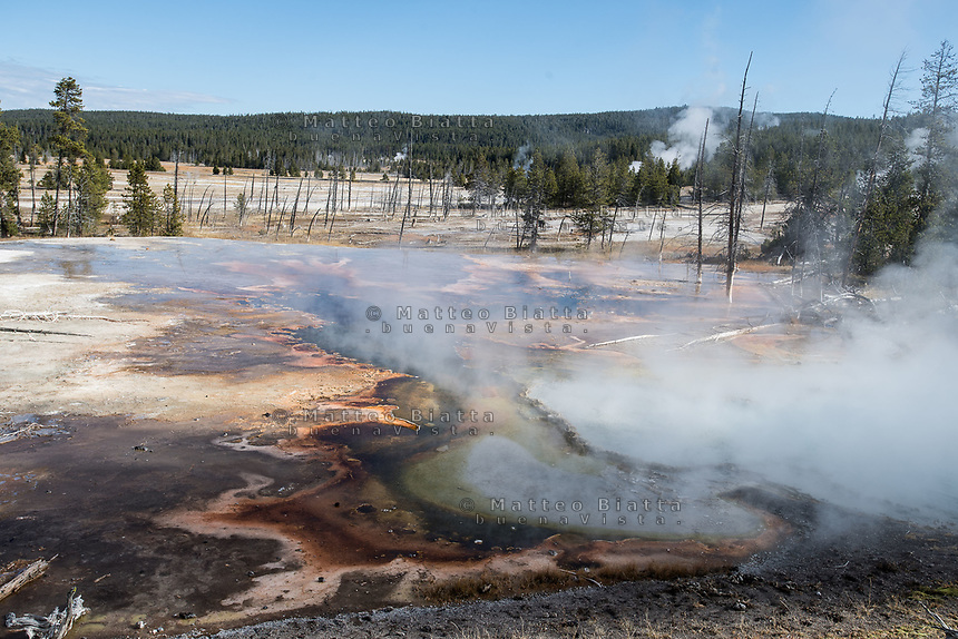 Yellowstone National park nella foto parco geografico Yellowston National Park 04/10/2017 foto Matteo Biatta  Yellowstone National Park in the picture park geographic 04/10/2017 Yellowstone National Park photo by Matteo Biatta