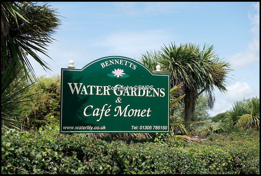 BNPS.co.uk (01202 558833)<br /> Pic: LauraDale/BNPS<br /> <br /> A general view of the Bennetts Water Gardens in Weymouth, Dorset.<br /> <br /> The Radio Times is advertising for a holiday to visit Claude Monet's famous water lilly gardens - in Weymouth.<br /> <br /> The TV magazine has mistakenly published a photograph of the Bennett's Water Gardens in Dorset to go with the travel promotion in this week's edition.